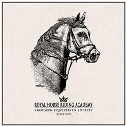 Sac Chevaux Centres Equestres Cours Equitation Pays Basque