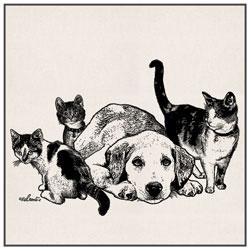 Chien Labrador Golden Retriever et petits chatons